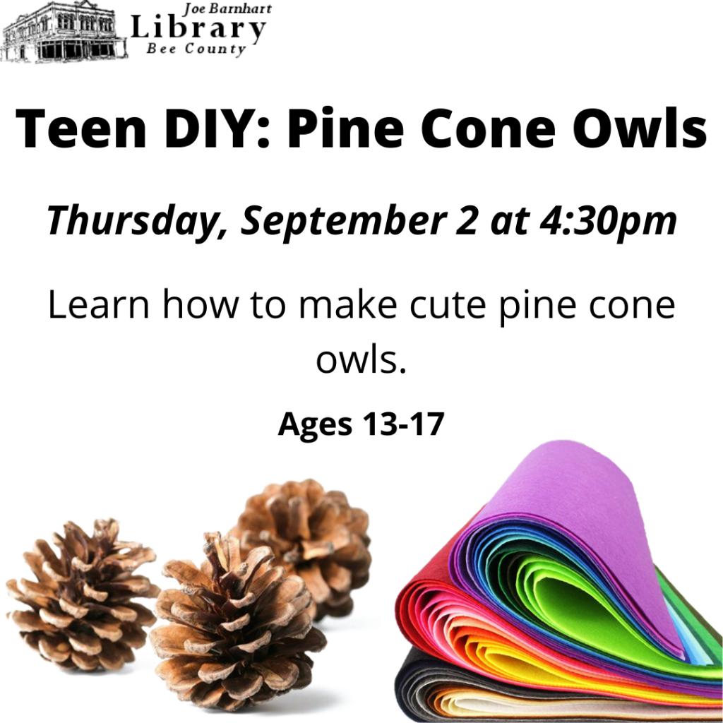Teen DIY Pine Cone Owls